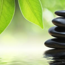 Holistic-Therapies-Waterford-Banner.jpg